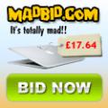 3 bids FREE when you register with MadBid.com - Mac Air